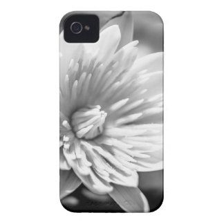 Black and White Flower iPhone 4 Cover