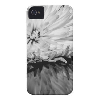 Black and White Flower Photo iPhone 4 Case
