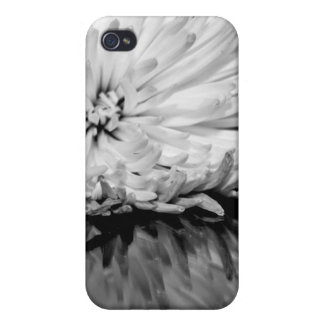 Black and White Flower Photo iPhone 4 Covers