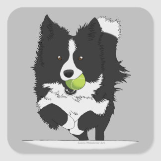 Black and White Flyball Collie Square Sticker
