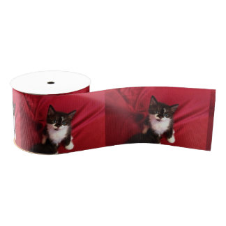 Black and white Foofy the kitten Grosgrain Ribbon