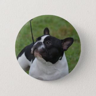 Black and White French Bulldog 2 Inch Round Button