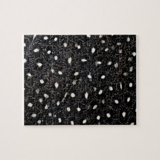 black and white guinea fowl feather jigsaw puzzle