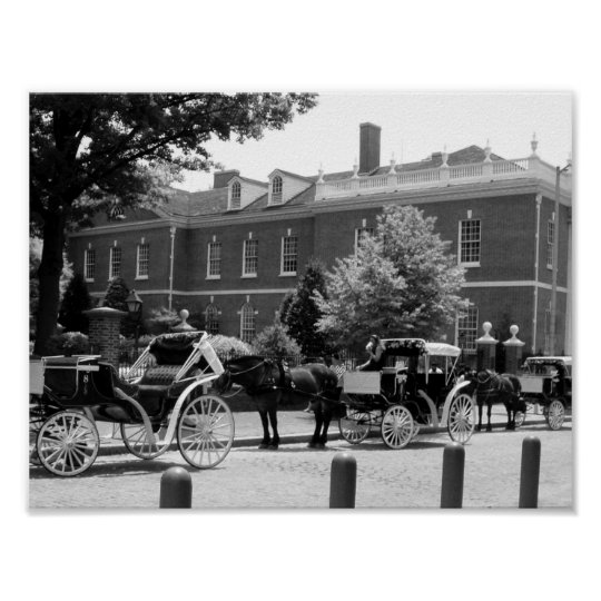 Black And White Horse And Carriage Photo Poster