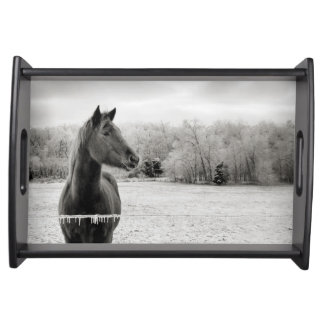Black and White Horse Serving Tray