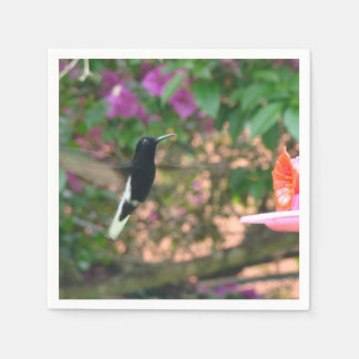 Black and White hummingbird flying at a feeder Paper Napkin