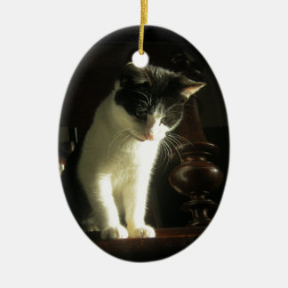 Black and White Kitten Cat Ceramic Ornament