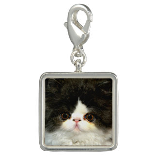 Black and White Kitten Charm