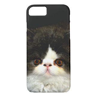 Black and White Kitten iPhone 7 Case