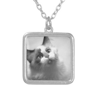 Black And White Kitten Portrait Silver Plated Necklace