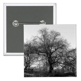 Black and White Landscape Photo Pins