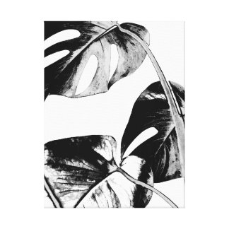 Black and white leaves monstera tropical palm canvas print