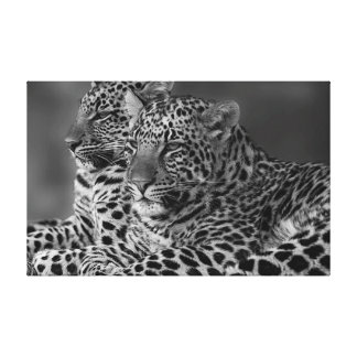 Black and White Leopard on Canvas