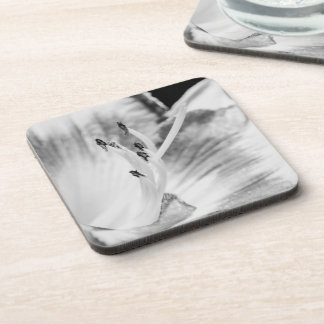 Black and White Lilly Close-Up Beverage Coaster