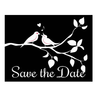 Black And White Lovebirds Save The Date Wedding Postcard