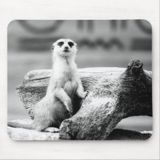 Black and White Meerkat On A Tree Mouse Pad