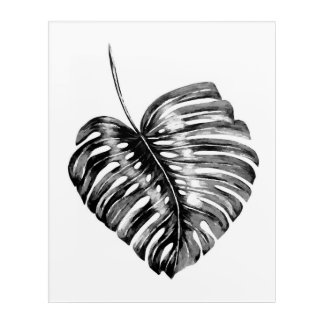 Black and white monstera leaves tropical exotic acrylic print
