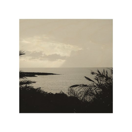 Black and White Ocean View Photograph Wall Art