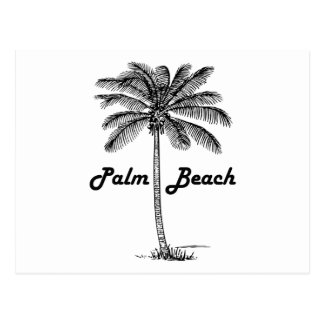 Black and white Palm Beach Florida & Palm design Postcard