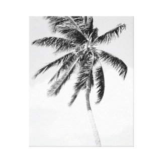 Black and white palm tree photo canvas print