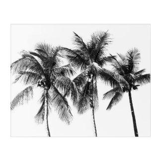 Black and white palm tree tropical paradise acrylic print