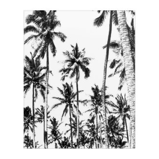 Black and white palm tree tropical summer acrylic wall art