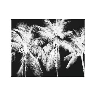Black and white palm tree tropical summer canvas print