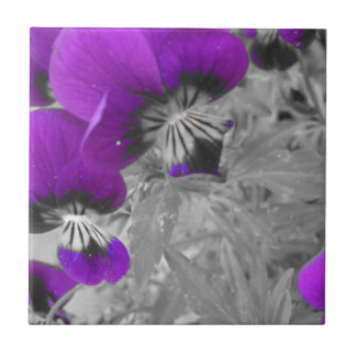 Black and White Pansy Effect Tile