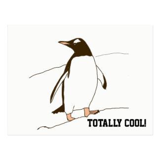 Black and White Penguin Postcard