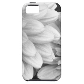 Black and White photo Flowers iPhone 5 Case