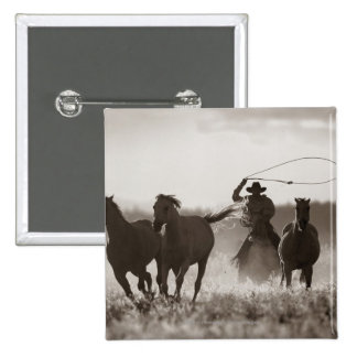 Black and White photo of a Cowboy Lassoing Horses 2 Inch Square Button