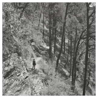 Black and white photo of hiker in forest fabric
