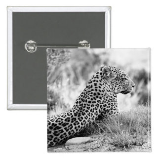 Black and White photo of Leopard looking Button