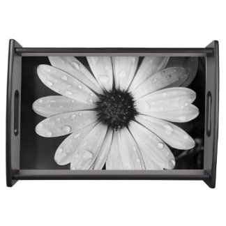 Black and White Photography of African Daisy Serving Tray