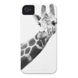 Black and white portrait of a giraffe iPhone 4 cover