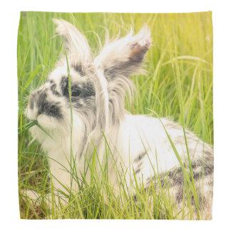 Black and white rabbit bandana