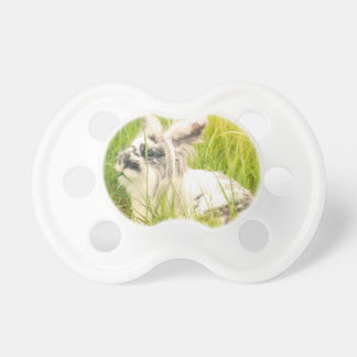 Black and white rabbit pacifier