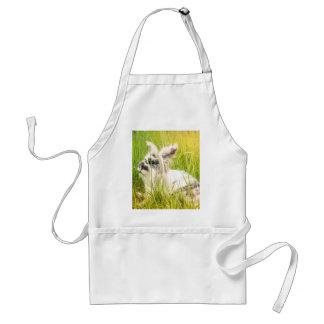 Black and white rabbit standard apron