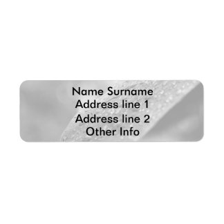 Black and White Raindrops On A Leaf Return Address Label