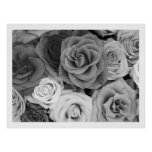 Black And White Roses Pattern Large Print