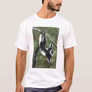Black and White Ruffed Lemur, (Varecia T-Shirt