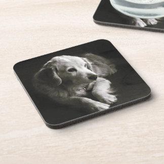 Black and White Sad Dog | Coaster