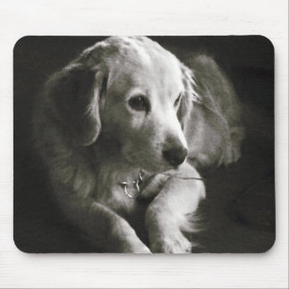 Black and White Sad Dog | Mousepad