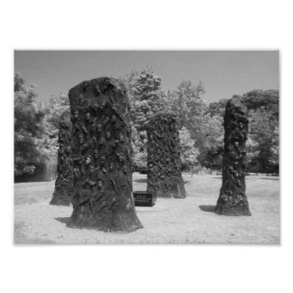 Black And White Sculpture Photo Poster