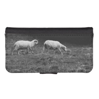 Black and White Sheep In A Pasture Photo Phone Wallet Cases