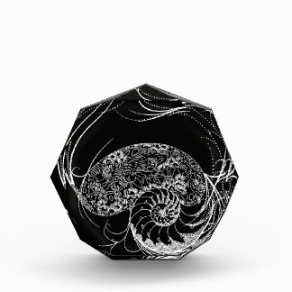 Black and White Shell Design