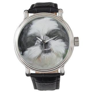 Black and white Shih Tzu Watch