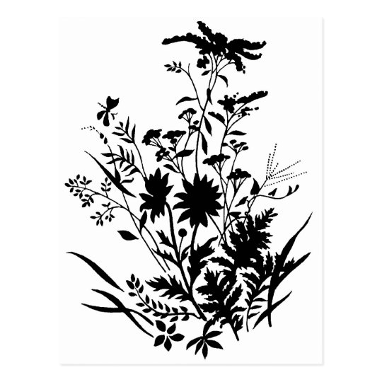 Black and White Silhouette Floral...postcard Postcard