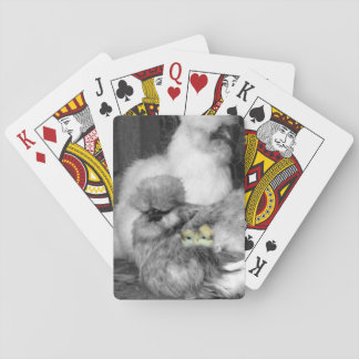 Black and White Silkie Chickens with yellow Chicks Playing Cards