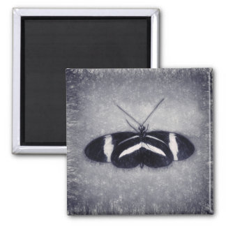 Black And White Sketch Butterfly Magnet